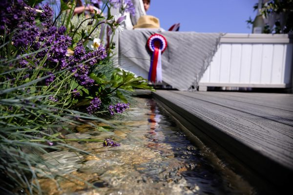 Lucy's garden's water stream adjacent to decking at Royal Norfolk Show