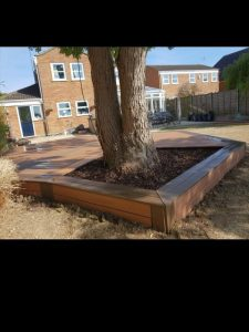 garden feature decking with an emerging tree back view
