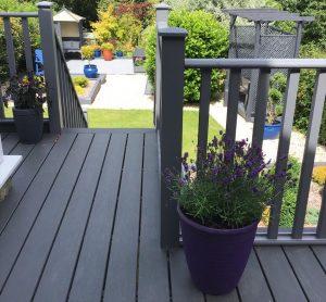 Trex decking with grey railings