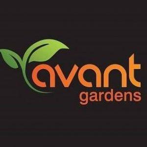 avant gardens